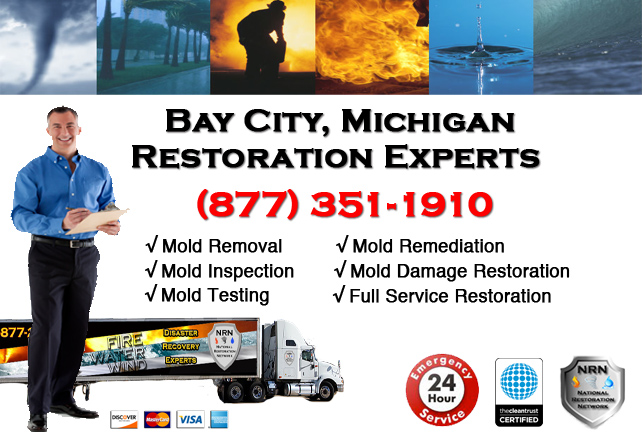 Bay City Mold Remediation Services