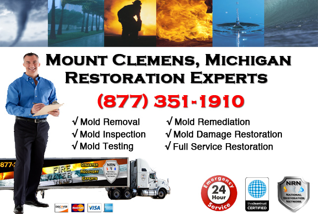 Mount CLemens Mold Remediation Services