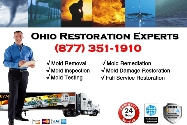 Ohio Mold Remediation & Cleanup Company