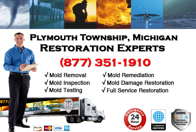 Plymouth Township Mold Remediation Services