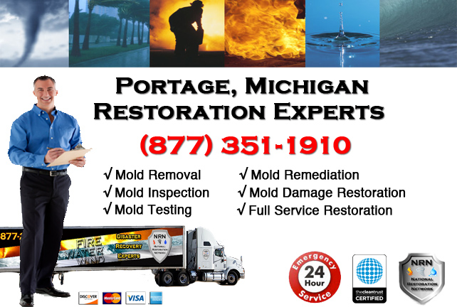 Portage Mold Remediation Services
