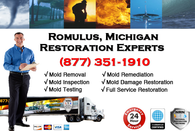 Romulus Mold Remediation Services