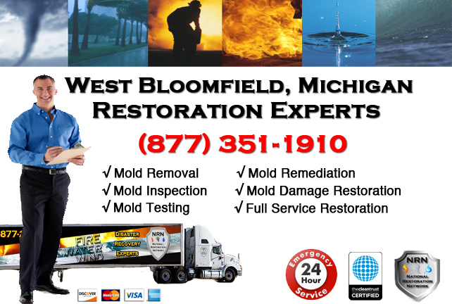 West Bloomfield Mold Remediation Services