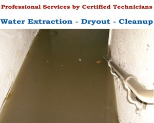 basement flood cleanup and drying services