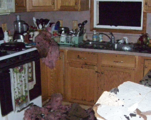 Kitchen Fire Damage Cleanup
