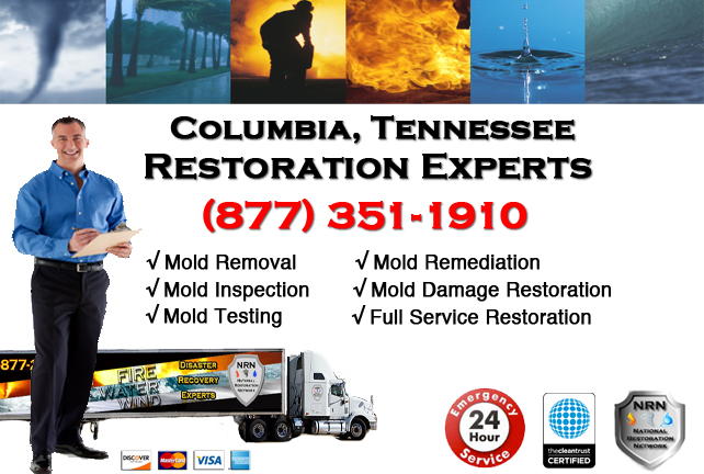 Columbia Mold Remediation & Cleanup