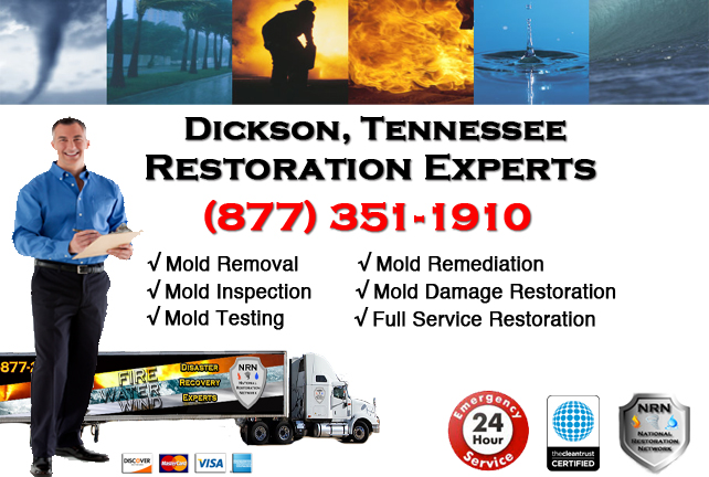 Dickson Mold Remediation & Cleanup