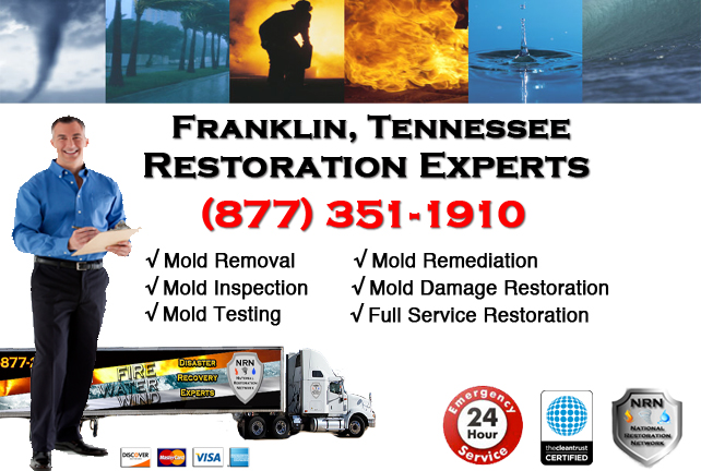 Franklin Mold Remediation & Cleanup