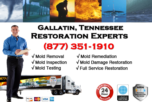 Gallatin Mold Remediation & Cleanup
