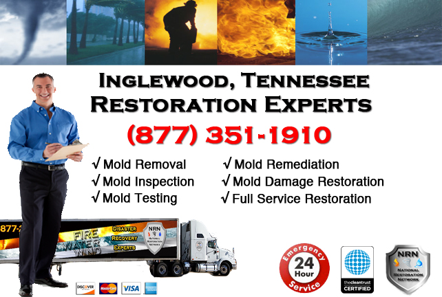 Inglewood Mold Remediation & Cleanup