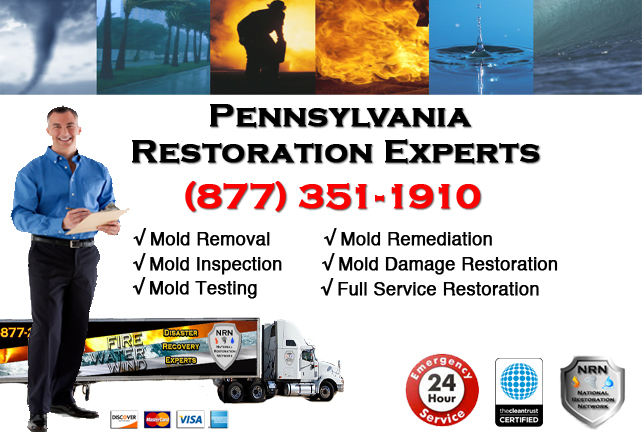 Mold Removal Pennsylvania