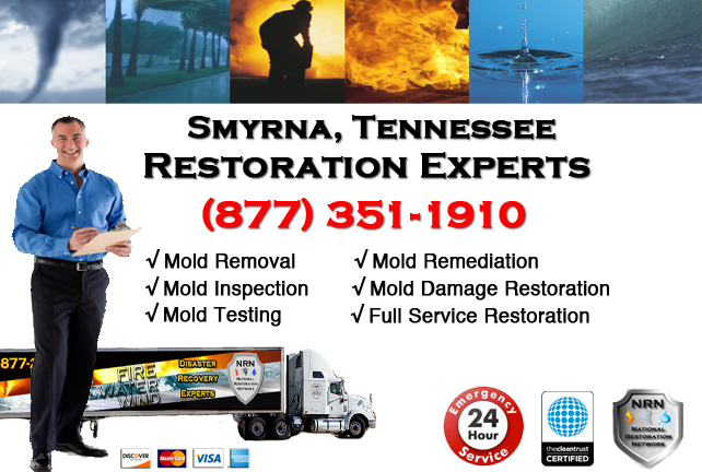 Smyrna Mold Remediation & Cleanup