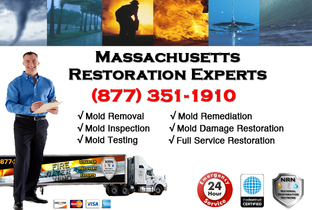 Massachusetts Mold Damage Remediation and Cleanup