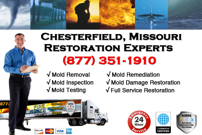 Chesterfield Mold Removal Services