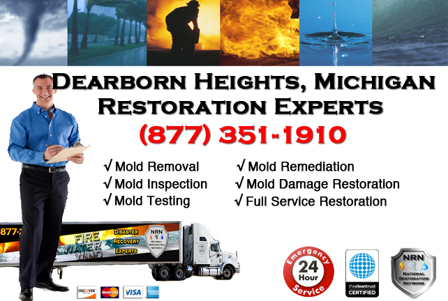 Dearborn Heights Mold Removal Services