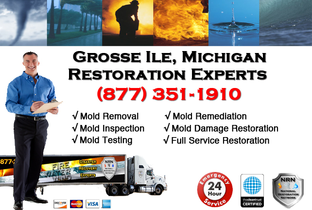 Grosse Ile Mold Removal Services