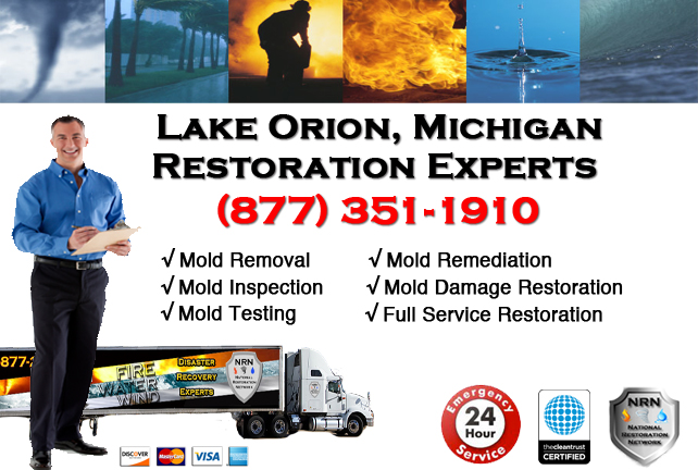 Lake Orion Mold Removal Services