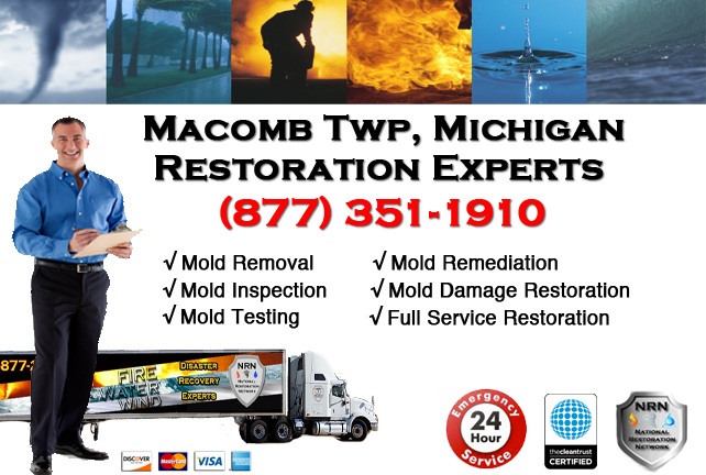 Macomb Township Mold Removal Services