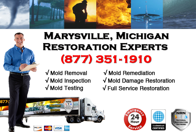Marysville Mold Removal Services