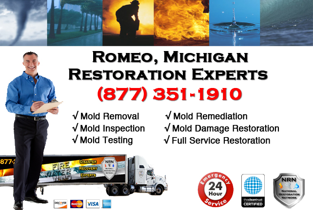 Romeo Mold Removal Services