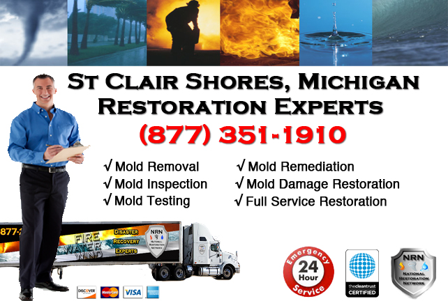 St Clair Shores Mold Removal Services
