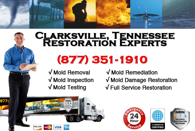 Clarksville Mold Remediation