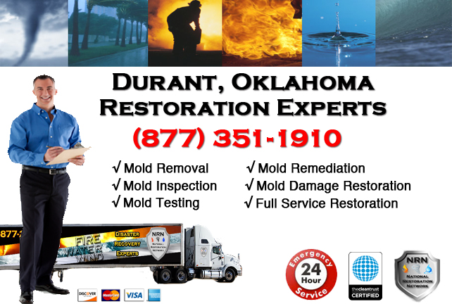 Durant Mold Remediation